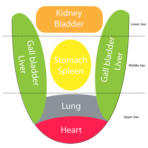 tongue in chinese medicine