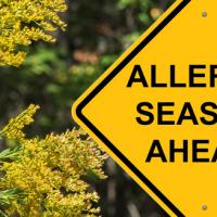 Allergy Season Sign- Header